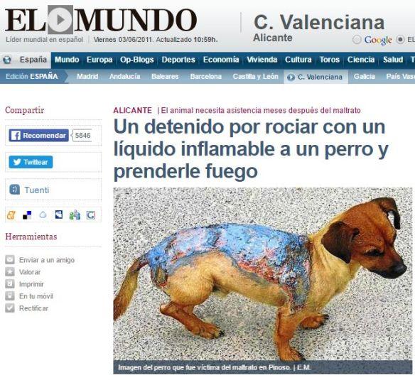 Notícia publicada per El Mundo on es veu la imatge d'un gos afectat per cremades