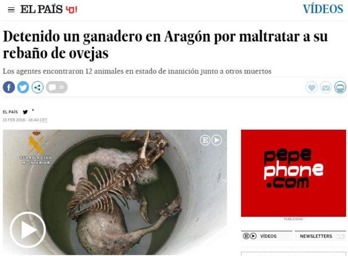 Noticia publicada per El País on es veuen els cadávers d'unes ovelles en descomposició